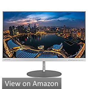 Lenovo L24q-20 Borderless Monitor